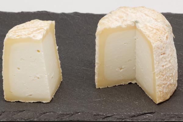 Chabichou du Poitou AOP