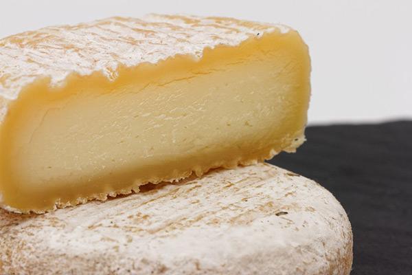 Picodon fromage de chèvre AOP